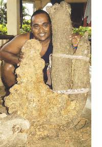 Mua Mesulama with giant yam